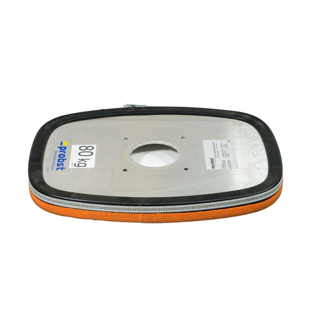 SPEEDY VS 110v  175lb Plate (12